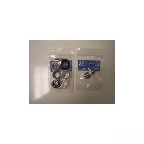 E-10 pump rebuild kit (249855)